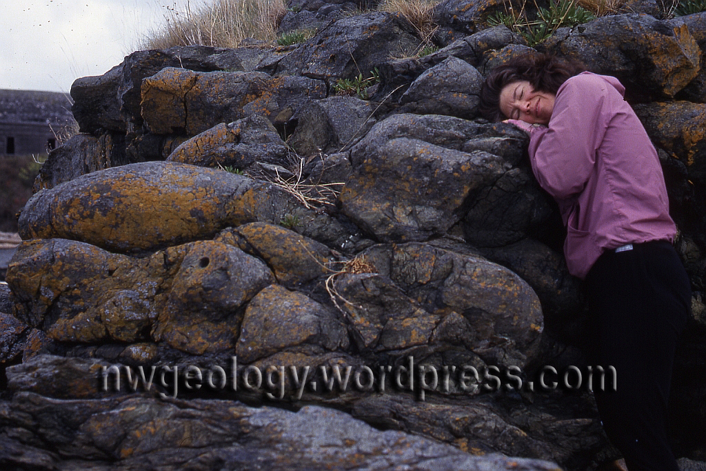 Pillow Lava In The San Juan Islands Northwest Geology