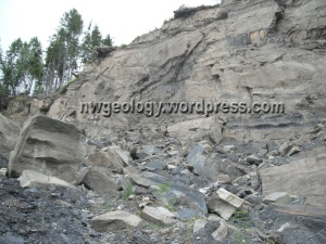 The 2013 rock fall came from the upper end of the vertical landslide scarp.