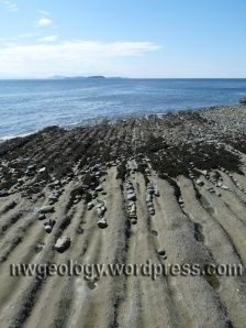 A nice sight in the gloom of a NW winter. Franks Beach on Lummi Island.