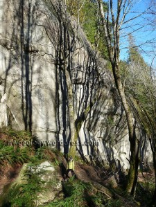 Tafoni Wall, striped by tree shadows, is a highlight of the Rock Trail.