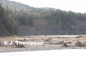 John Thompson's photo from the gravel bar, Feb. 21, 2014.