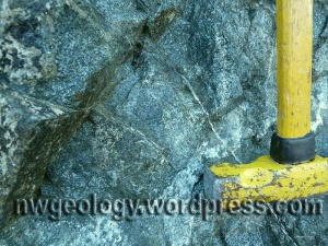 Gabbro at Stop 1. The dark mineral crystals are pyroxene, the white ones are plagioclase feldspar.