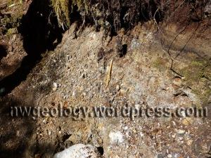 Ridley Creek lahar deposit on Ridley Creek trail.