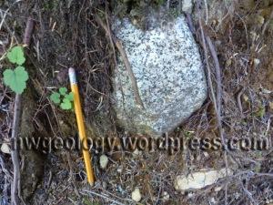 Granitic erratic on Ridley Creek Trail