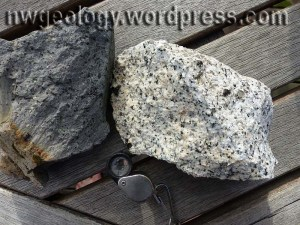 Hand samples from a dark andesite (?) dike and granodiorite of the salt-and-pepper Hidden Lakes stock.