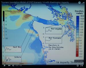 tsunami inundation animation